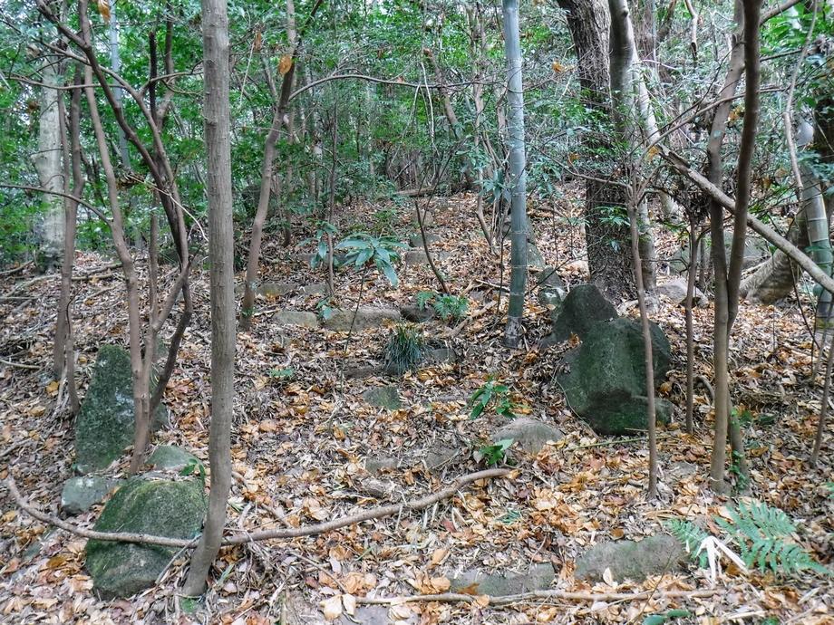 生駒の古道探索