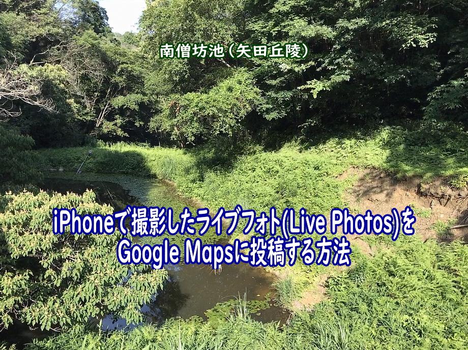 ライブフォト(Live Photos)