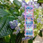 Blog Title 20170620
