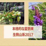 Blog title 20170704